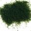 sponge powder สีเขียวเข้ม / 30 กรัม thumbnail 1