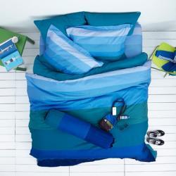 ชุดเครื่องนอนLotus ผ้าปูที่นอนLotus โลตัสสีพื้น-เเถบสีน้ำเงิน รุ่น LI-SD-09B
