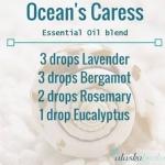 ผสมผสานสร้างกลิ่น สัมผัสแห่งรักจากท้องทะเล ด้วยตัวคุณเอง DIY essential oil BLEND