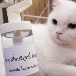 น้ำเกลือบริสุทธิ์ สำหรับเช็ดตา สุนัขและแมว (ส่งฟรี)