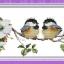 นกคู่ ชุดปักครอสติช พิมพ์ลาย งานฝีมือ thumbnail 1
