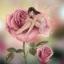 ดอกกุหลาบ+ ภูติดอกไม้ ชุดปักครอสติช พิมพ์ลาย งานฝีมือ thumbnail 1