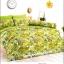 ชุดเครื่องนอน ผ้าปูทที่นอนtoto ลายต้นไม้ ธรรมชาติ TT479