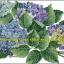 ช่อดอกสีม่วง ชุดปักครอสติช พิมพ์ลาย งานฝีมือ thumbnail 1