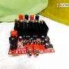 ภาคขยาเยเสียงกำลังวัตต์สูง ระบบดิจิตอล 600 วัตต์ ( RMS ) 2 CH TAS5630
