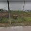 ขายที่ดิน ลำลูกกาคลอง 3 ใกล้รถไฟฟ้า เหมาะปลูกบ้าน