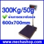เครื่องชั่งดิจิตอล เครื่องชั่งดิจิตอลแบบตั้งพื้น300kg ความละเอียด50g แท่นขนาด600*700 mm รุ่น T7E-PB6070 (ผ่านการตรวจรับรอง) thumbnail 1
