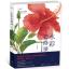 หนังสือสอนวาดรูประบายสีน้ำ ภาพดอกไม้ (พร้อมส่ง) thumbnail 1