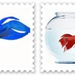 ปลากัดจีน (Veiltails)