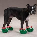 รองเท้าน้องหมาเบอร์2