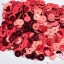 เลื่อมปัก กลม สีแดง 6มิล(5กรัม) thumbnail 1