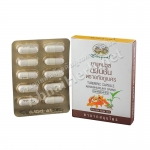 ยาแคปซูลขมิ้นชันชนิดกล่อง (1 แผง 10 แคปซูล) อภัยภูเบศร