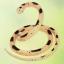 งูยางสำหรับไล่นก thumbnail 3