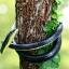 งูยางสำหรับไล่นก thumbnail 4
