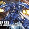 [HG] Gouf R35