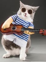 ชุดแฟนซี น้องหมา น้องแมว ชุดนักดนตรีเล่นกีต้าร์