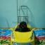 รถเสาน้ำเกลือเด็ก เฟอร์รารี่-สปอร์ต-เหลือง-บี
