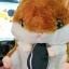 SC0005 Free ปักชื่อบนผ้าห่ม!! ตุ๊กตาหมอนผ้าห่ม แฮมเตอร์สีน้ำตาล น่ารักมากๆ ตัวอ้วนปุ๊กลุกน่ากอดพร้อมผ้าห่มแสนนุ่มสบาย