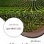 หนังสือสอบ นักวิชาการส่งเสริมการเกษตร กรมส่งเสริมการเกษตร (อัพเดท 1/2561)