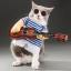 ชุดแฟนซี น้องหมา น้องแมว ชุดนักดนตรีเล่นกีต้าร์ thumbnail 1