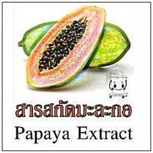 PAPAYA FRUIT EXTRACT สารสกัดมะละกอ