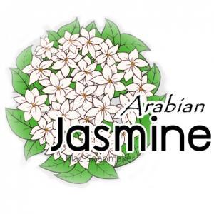 JASMINE(ARABIAN) หัวน้ำหอม มะลิอาราเบียน