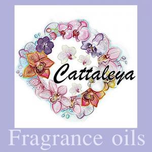 CATTLEYA หัวน้ำหอมแคทรียา