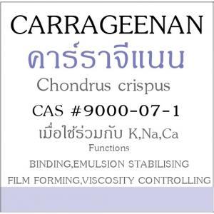 CARRAGEENAN (Kappa)คาร์ราจีแนน