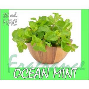 หัวน้ำหอม OCEAN MINT