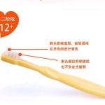 แปรงสีฟันเด็ก 3 STEP Keaide Biddy Training Toothbrush Set