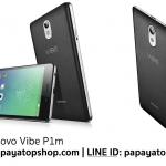 Lenovo Vibe P1m Case