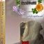 E-book พันธะหัวใจทมิฬ ภาค แค้นรักอสูร้อยเล่ห์ / ไพนารี Bestseller thumbnail 1