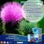 LIVER TONIC 35000 mg ล้างสารพิษในตับ 2 กระปุก thumbnail 2