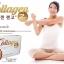 Collagen Zengo thumbnail 2