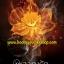 เปิดจอง ส่งฟรี ผลาญรัก / SHASHA ใหม่ทำมือ ( เข้า มีนา ) thumbnail 1