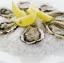 C Oyster Extract จีเอ็นซี หอยนางรม สกัด ชนิดแคปซูล 60 Softgel Capsules Code: 430967 เลขทะเบียน อย. 10-3-02940-1-0129 thumbnail 2