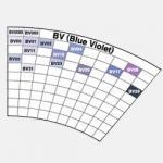 BV (Blue Violet)