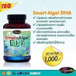 auswelllife smart algal dha for kids ดีเอชเอ 1 กระปุก (60 เม็ด)