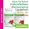 Green Tea Extract เครื่องดื่มชาเขียวสกัดชนิดผงเพิ่มการเผาผลาญ ลดสัดส่วน ลดต้นขา