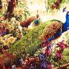 "MG734 ภาพระบายสีตามตัวเลข ""นกยูงคู่ในหมู่ดอกไม้"""