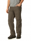THE NORTH FACE Mens Paramount Traverse Pant
