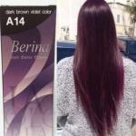 Berina เบอริน่า A14 สีน้ำตาลเข้มประกายม่วง