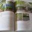 my home ฉบับที่ 54 พฤศจิกายน 2557 Home of Collectors บ้านนักสะสม thumbnail 10