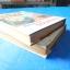 เลือดพเนจร จำนวน 2 เล่ม โดย อรวรรณ ปกแข็งมีใบหุ้มปก thumbnail 6
