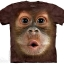 เสื้อยืด3Dสุดแนว(BIG FACE BABY ORANGUTAN T-SHIRT) thumbnail 1