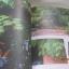 I Love Garden Vol. 8 Make Me Garden จัดสวนด้วยใจแบบไม่สำเร็จรูป โดย ทิพาพรรณ ศิริเวชฏารักษ์และวรัปศร อัศนียุทธ thumbnail 5
