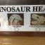 ชุดกระเป๋าขุดฟอสซิลและนำโครงกระดูกมาประกอบ(DinoSaur Adventure) thumbnail 7
