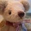 ตุ๊กตาหมีผ้าขนสีครีมขนาด 22 cm. - Ivy thumbnail 3