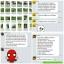 ชาภู่หลาน - phulan สมุนไพรเพื่อสุขภาพ ล้างสารพิษ thumbnail 9