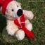 หมีขาวนุ่มนิ่ม ขนาด 19 ซม. thumbnail 5